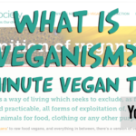 What Is Veganism