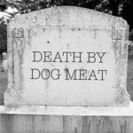 3 Reasons Why Eating Dog Meat Can Kill You