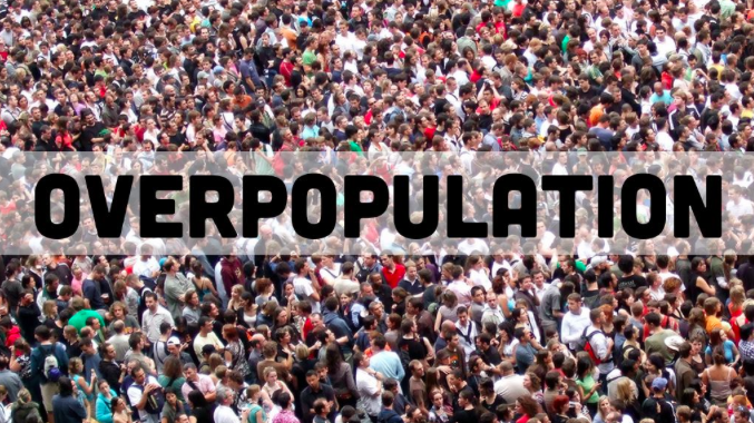 Image result for overpopulation
